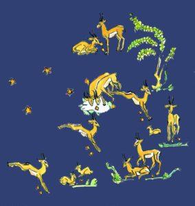 L'asterismo delle Gazelle