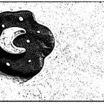 La META' del CIELO: Cefeo