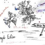 I NOMI delle stelle del Triangolo Estivo – Wild Village di Ostia