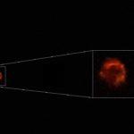 La stella più rossa del cielo – agosto 2020